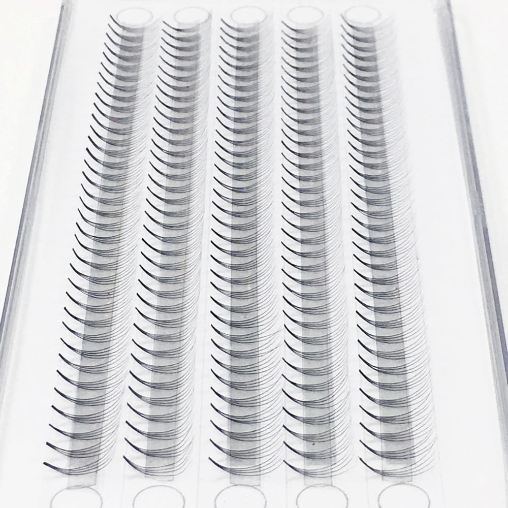 6a8bf5690cf MUSE Premade Volume Fans 0.07 4D C Curl XD Volume Lash Fans Eyelash  Extensions