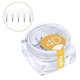 Noir Volume Lashes 0.07 4D Premade Fans Professional Eyelash Extensions loose in jar