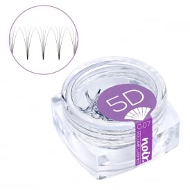 Noir Volume Lashes 0.07 5D Premade Fans Professional Eyelash Extensions loose in jar