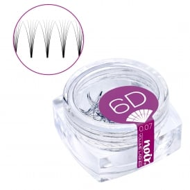 Noir Volume Lashes 0.07 6D Premade Fans Professional Eyelash Extensions loose in jar